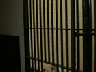 Inmate charged after throwing urine