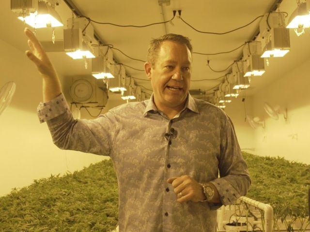 The high school teacher became a cannabis CEO